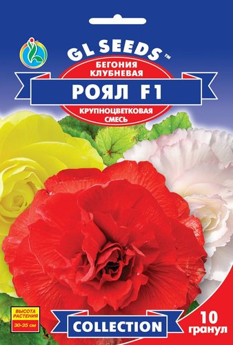Семена Бегонии Рояль F1 смесь (10шт), Collection, TM GL Seeds