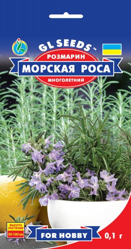 Семена Розмарина (0.1г), For Hobby, TM GL Seeds
