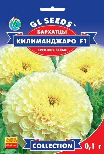 Семена Бархатцев Килиманджаро F1 белые (0.1г), Collection, TM GL Seeds